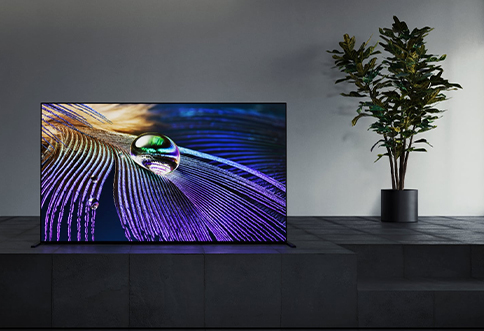 graphic product sony-tv